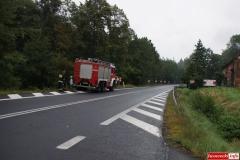 Wypadek w Radoniowie - Fiesta 8