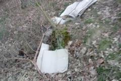 wysypisko śmieci karłowiec mirsk 1