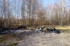 wysypisko śmieci karłowiec mirsk 4