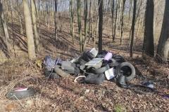 Wysypisko śmieci koło Dworka 21 2
