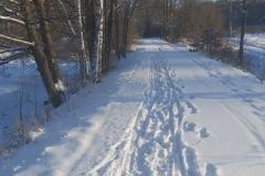 Zima w gminie Lwówek Śląski 1