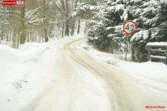 Zimowe drogi 12