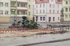 Lwówek Śląski klomb 2019 10